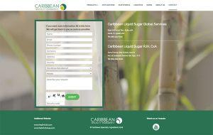 paginas-web-aguascalientes-relief-04