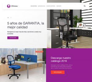 paginas-web-aguascalientes-relief-16