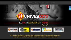 paginas-web-aguascalientes-relief-22